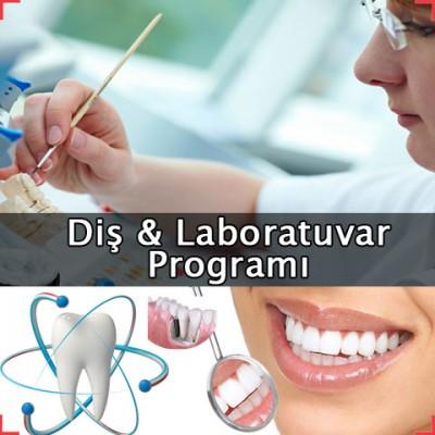 Diş Laboratuvar Programı